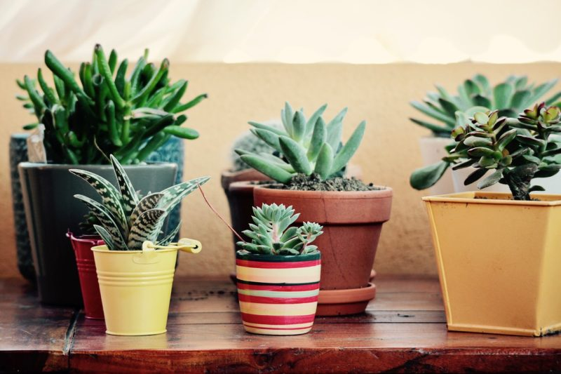 5 ideas de decoraci n de jardines peque os con encanto for Decoracion para jardin pequeno